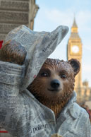 Paddington Bear Trail 2014